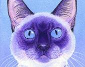 Siamese Cat - Original Watercolor, Mixed Media Painting - Ranlett