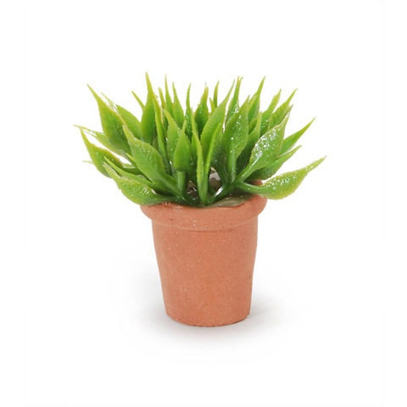 Miniature Small House Plant From Saharassupplies On Etsy