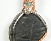 Plant fossil: Fern Frond Fossil with Apatite, pendant