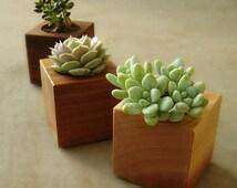 Minimalist Wood Succulent Planters, Modern Succulent Plant Cubes, Gardener Gift, Wedding Gift, Home Decor Set of Three