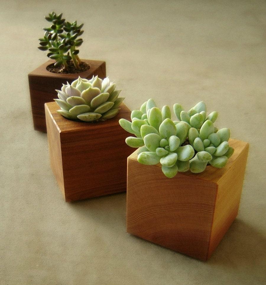 Wood succulent planter modern succulent pot gardener gift for Planter design ideas