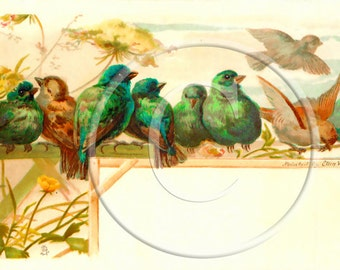 Blue and Green Cute Birds Antique Digital Download Business Cards Invites