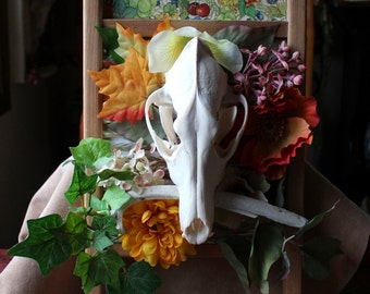 The Fruits of Our Labors - coyote skull and deer rib on washboard with faux flowers and leaves - upcycled materials