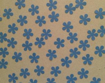 Blue Shimmer Daisy Flowers