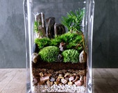 Easy Garden Landscape Terrarium Cube - Apartment Urban Garden Solution