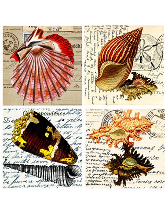 "vintage sea shell postcards clip art digital graphics image download collage sheet  printable 4"" squares nautical beach coasters tiles cards"