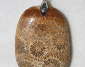 """Petrified Coral Fossil Puffy Oval 1-7/8"""" Pendant"""