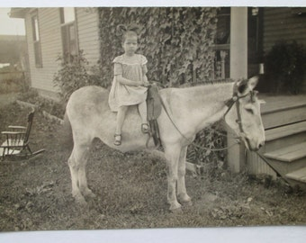 RPPC Real Photo POSTCARD of PHOTOGRAPHER'S Mule/Donkey & Cute Little Girl