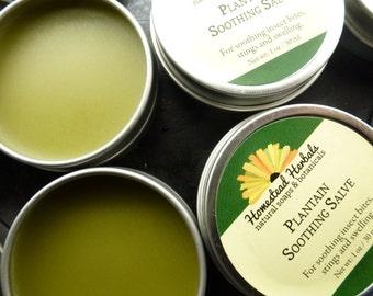 Plantain Soothing Salve/ Bug Bite Salve/ Salve organic 1 oz Travel Tin