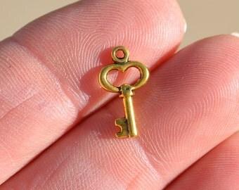 10  Gold Key Charms GC3411
