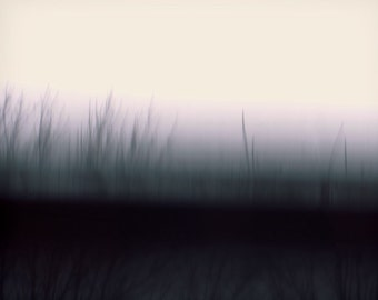 "Abstract landscape photography forest surreal trees mysterious dark blur mauve nature - ""Breaking dawn"" 8 x 10"