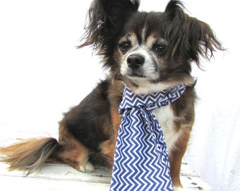 Dog Scarf-Blue and White Chevron Scarf-Cotton