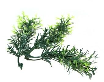 100 Green Sprigs