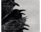 Raven artwork , Raven, crow,  Etching, 5 inch x 7 inch 2013