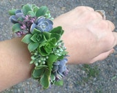 Wrist corsage of succulents, cuff style
