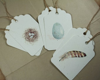 6 Spring Nature Series Tags, Watercolors Set of 6, Recycled Papers