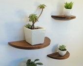 Set of 2 half round walnut shelves
