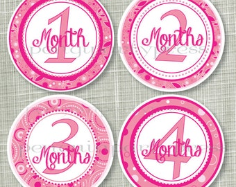 Pink Pasiley, Milestone Stickers, Monthly Stickers, Baby Shower Gift, Baby Stickers, Professionally Printed