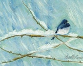 Snow Bird, Prints of Pastel