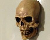 Skull fridge magnet