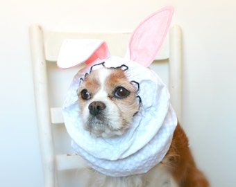 Bunny Rabbit Dog Snood, Stay-Put 3 Rows Elastic Thread, Easter Spring Snood, Cavalier and Cocker