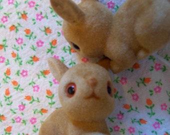 flocked bunnies from hong kong