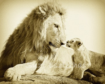 Safari Baby Shower Card, BABY LION and DAD, Blank Greeting Card, Baby Animal Photograph, Wildlife Photography, Note Card, Sepia, Fathers Day