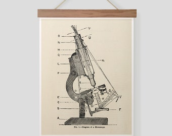 Vintage Science Diagram of Microscope Pull Down Chart