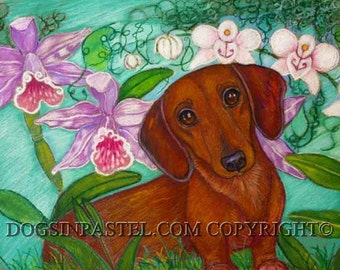 Dachshund art painting pet portrait cattleya orchids ORIGINAL Dog animal Painting dachshund pets dogs