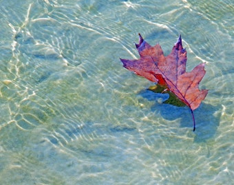 Single Rusty Brown Fallen Leaf on beach with rippling blue green water as sun shines Nature Wall Art Home Decor Fine Art Photography