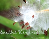 Practice Random Acts of Kindness - 5x7 Photographic Art Print