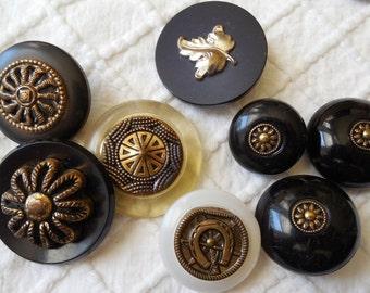 8 Extra Nice Embellished Vintage Coat Buttons