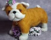 Needle Felted Life Size Fat and Wrinkled Bulldog Puppy, dog honey and white