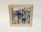 Forest Shadow Box (black micro)