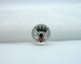 10pcs 12mm Round Handmade Photo Glass Cabochons (Bee Insect)  GB11-32