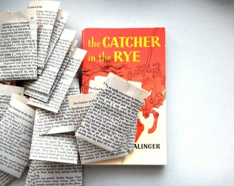 catcher in the rye censorship essay Cover of the catcher in the rye, 1953 edition published by when the literature censorship board reviewed salinger's novel in october it had 'no hesitation.