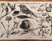 "Cotton Canvas ""The Bird"" Floor Mat"
