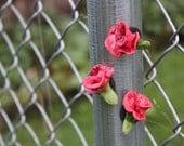 Little Red Rose Flower Magnets