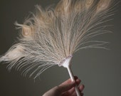 Peacock Feather Fan Ivory and Champagne - Bridal Accessory - Old Hollywood Wedding - Gatsby Wedding - Bridal Bouquet Alternative