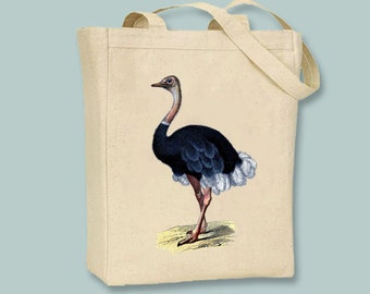 Vintage Ostrich Illustration on Canvas Tote -- Selection of sizes available