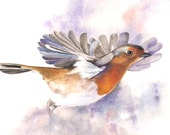 Robin Print - R00315- 5 by 7 archival print of Bird painting wall art print - bird art print