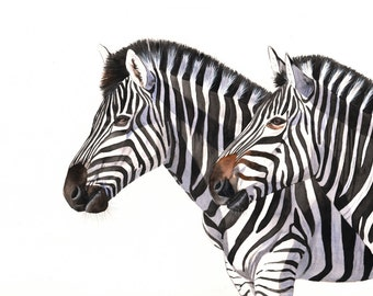 Zebras watercolor painting animal art PRINT of watercolor painting 5 by 7 size, Z2014, zebra print, african animal wall art