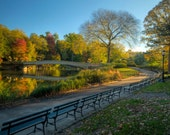 Autumn Morning in Central Park, Landscape Photograph, Bow Bridge and Path, New York City, Reflection, Color Photograph, Fall Foliage