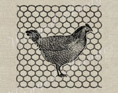 Hen, Chicken Wire. Instant Download Digital Image No.317 Iron-On Transfer to Fabric (burlap, linen) Paper Prints (cards, tags)