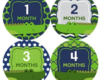 FREE GIFT, Woodland Monthly Baby Stickers Boy, Alligators, Woodland Baby Month Stickers, Woodland Baby Month Stickers, Green, Navy, Gray