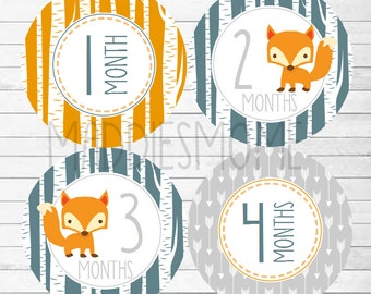 Monthly Baby Boy Stickers, Milestone Stickers, Baby Month Sticker Monthly Bodysuit Sticker Monthly Stickers Woodland Arrows(Fox Orange Navy)