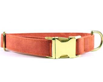 Patina in Terracotta Dog Collar