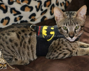 Mynwood Cat Walking Jacket Harness Vest Batman