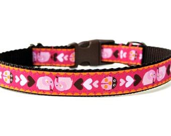 "Hot Pink Dog Collar 3/4"" Spring Dog Collar"