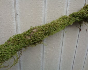 Large Moss Log 3 Feet